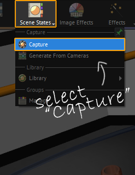 "from the Scene state menu, select ""capture""."