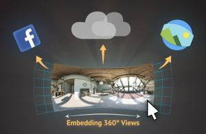 30 embedding image